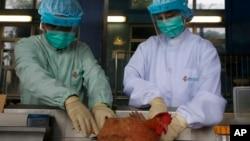 Nhà chức trách lấy mẫu gia cầm sống từ Trung Quốc để kiểm tra vi rút H7N9.