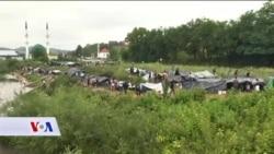 BiH: Eskalacija migrantske krize