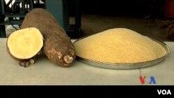 Report on Robert Mugabe Food Donation Filed By Gandri Maramba