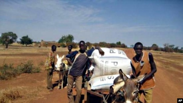 Farmers in Burkina Faso haul their harvest stored in airtight bags.