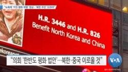 "[VOA 뉴스] ""뉴욕에 '거짓 평화 위험' 영상…'북한 주민' 도와야"""