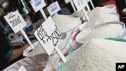FAO, 식량 가격 급등 관련 특별 회의 소집
