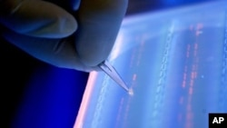 Lab officer cuts DNA fragment under UV light from an agarose gel for DNA sequencing as part of research to determine genetic mutation in a blood cancer patient, Singapore, file photo.