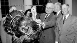 Presidential Pardon for Thanksgiving Turkey Has Long Tradition