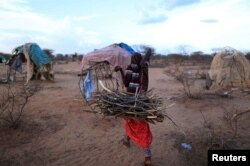 FILE - An internally displaced woman from a drought hit area carries firewood for cooking near her shelter at a makeshift settlement in Dollow, Somalia, Apr. 5, 2017.