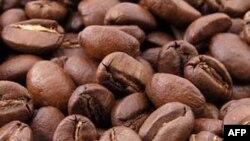 Sản lượng cà phê của Việt Nam giảm 20%