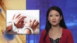 Trí thức Việt ra Tuyên bố phản đối Nghị định 72 về quản lý internet
