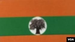 Bandeira da Aliança Patriótica Nacional