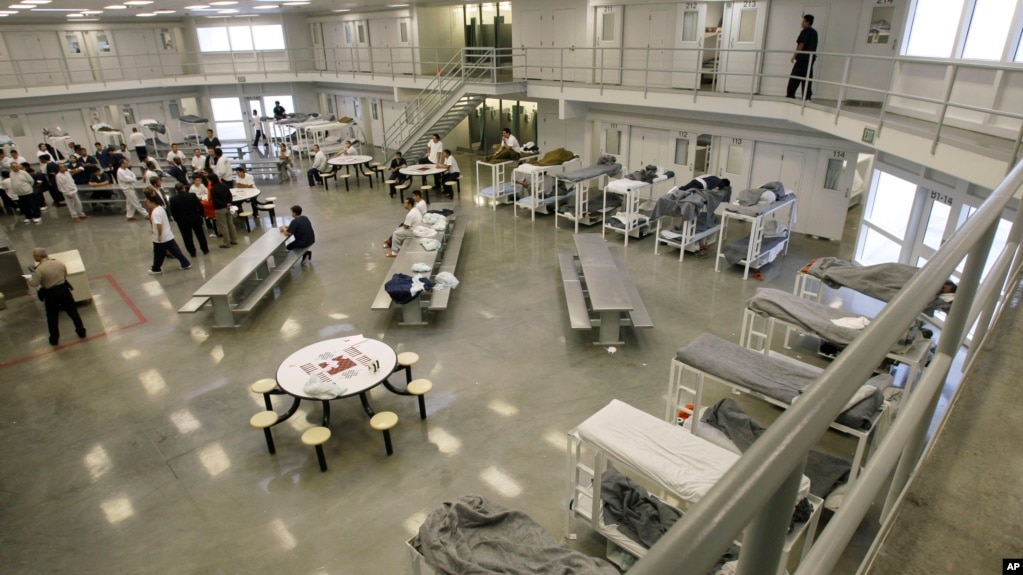 the b cell and bunk unit of the northwest detention center in tacoma