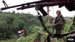 Policías antinarcóticos en un campo de coca, cerca de La Gabarra, en el este del país y cerca de la frontera con Venezuela.