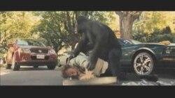 """Novi film iz serijala """"Planeta majmuna"""""""