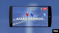 VOA Afaan Oromoo
