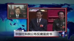 VOA连线:中国社科院公布反腐蓝皮书