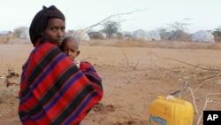 Trại tị nạn Dadaab của Kenya gần biên giới Somalia