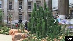 Izložba južnoafričkog pejsaža u Britanskom muzeju u Londonu