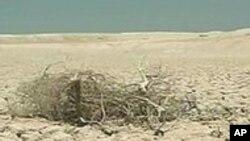 Photo d'archives - Le changement climatique va entraîner des sécheresses plus aigües en Afrique, selon les experts de l'ONU