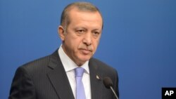 Turkey's Prime Minister Recep Tayyip Erdogan talks to the media during a news conference at the government house Rosenbad in Stockholm, Nov.7, 2013