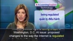 Anh ngữ đặc biệt: Internet Rules (VOA)
