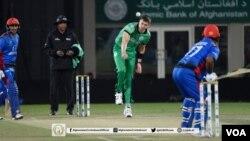 بازیکنان تیم ملی کرکت افغانستان مصروف بیتنگ در برابر تیم آیرلند
