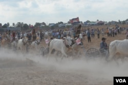 Activities during oxcart race in Rorleng Krel commune, Samrong Torng district, Kampong Speu province on April 07th, 2019. (Nem Sopheakpanha/VOA)