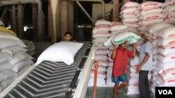 在越南南部前江省的工人將白米托運上運輸帶準備運送出國。