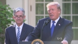 Trump Names Jerome Powell New Fed Chief