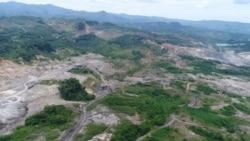 Le déclassement d'une partie de la forêt de Kua au centre d'une polémique
