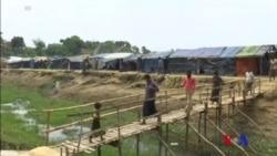 聯合國敦促緬甸調查針對羅興亞穆斯林施暴的指控