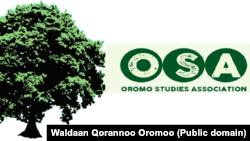 Waldaan Qorannoo Oromoo kora isaa ka walakkeessa waggaa, boorii fi iftaan London keessatti geggeeffata.
