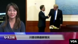 VOA连线(张佩芝):川文会成果与分析