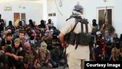 دتانیا جویا خاوند په شام کې د داعش یو مهم کمانډر و