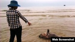 Cuộc sống của ngư dân ở các tỉnh miền Trung đã bị tác động nặng vì vụ cá chết hàng loạt.