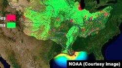 Para ilmuwan AS memperkirakan 'Zona Mati' di Teluk Meksiko akan terus meluas dalam beberapa bulan mendatang (foto: peta Zona Mati).