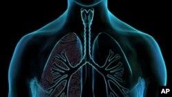 پیشرفت های تازه در عرصۀ تداوی سرطان شش