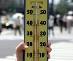 Thermometer merkuri pada 20 Juli 2004. (Foto: Reuters)