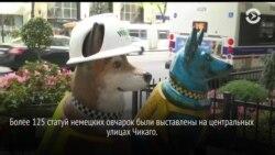 Полицейские собаки Чикаго