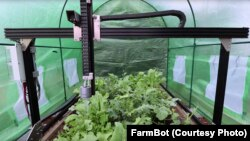 FarmBot can water plants.