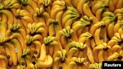 Organic bananas are pictured in an organic supermarket in Berlin, Germany, January 2013. (REUTERS/Fabrizio Bensch)