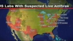 Amerika'da Şarbon Krizi Sürüyor