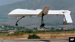 A U.S. Predator drone (file photo)