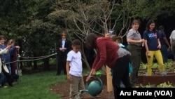 Prva dama SAD, Mišel Obama, angažovana je u borbi protiv dečije gojaznosti. Njena bašta u Beloj kući postala je inspiracija mnogim školama.