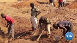 Malawi Farmers Rush to Gold Amid Poor Harvests