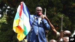 Tổng thống Bozize sẽ đảm nhận luôn chức vụ bộ trưởng quốc phòng.