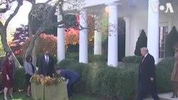 Tổng thống Trump ân xá gà Tây
