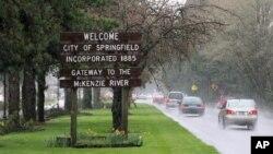 Así luce la entrada del Springfield real