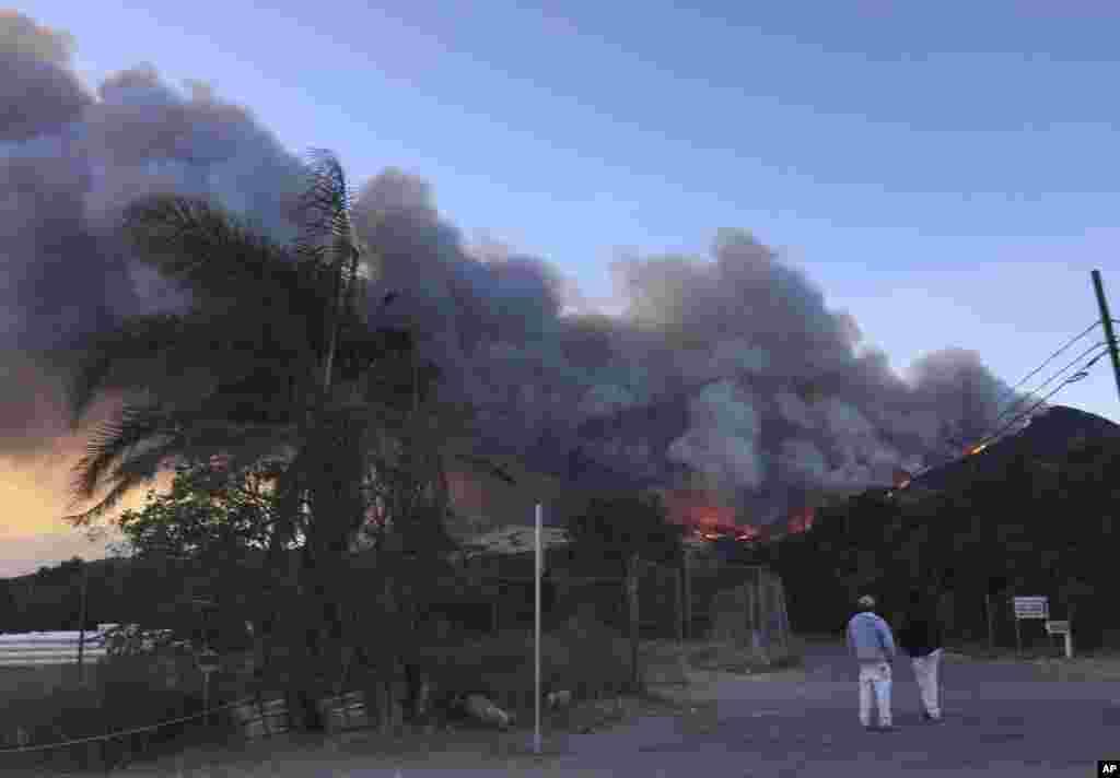 Лісова пожежа біля шосе на північний захід від Філмору, штат Каліфорнія, 7 грудня 2017 року.