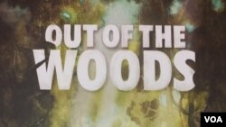 Out of the Woods American Café October 3, 2017