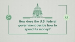Explainer: Federal Budget