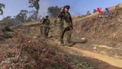 Poppies Power and Politics in Myanmar's Kokang Conflict