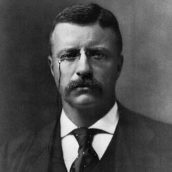 Theodore Roosevelt in 1901, the year he became president